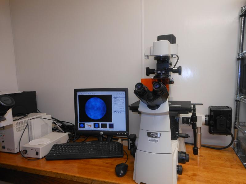 Aberration-limited Nikon Inverted Microscope and Camera Analytical Lab Service